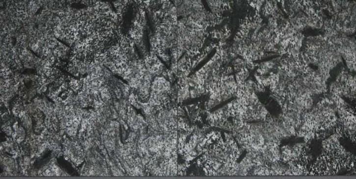 Silver grey 50 x 50 x 1,5 cm geschliffen luxuriöser Naturstein