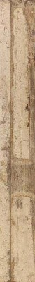 """Boden-Fliesen Wand-Fliesen Holzdesign 80 x 10 cm Keramik <br class=""""ansicht"""" />Farbe: Sand"""